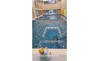 亲子儿童游泳池、安康铜银离子消毒游泳池、不投药的游泳池